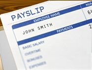 Payslip Document Package
